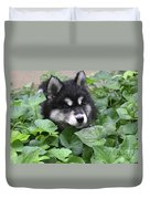Precious Fluffy Alusky Puppy Dog In Green Foliage Duvet Cover