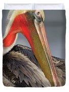 Preening Pelican Duvet Cover