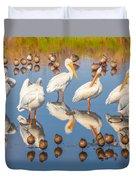 Preening Primping Pelicans Duvet Cover