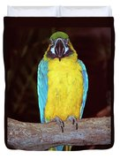 Pretty Bird Duvet Cover