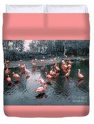 Pretty Flamingoes Duvet Cover