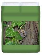Pretty Morpho Butterfly Resting In A Butterfly Garden  Duvet Cover