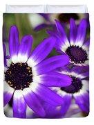 Pretty Purple Daisies Duvet Cover