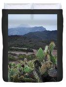 Prickly Pear Cacti Rancho Sierra Vista Satwiwa Mountains Duvet Cover