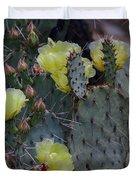 Prickly Pear In Bloom Duvet Cover