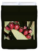 Prickly Pear-jerome Arizona Duvet Cover