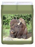 Prim And Proper Bison Duvet Cover