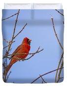 Primary Colours - Northern Cardinal - Cardinalis Cardinalis Duvet Cover