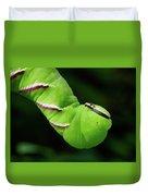 Privet Hawk Moth Caterpillar Duvet Cover