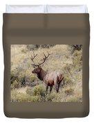 Prize Bull Elk Duvet Cover