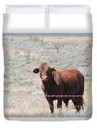 Proby's Cow Duvet Cover