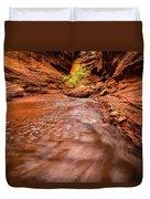 Professor Creek Canyon Duvet Cover
