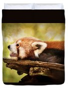 Profile Of A Red Panda Duvet Cover