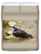 Profile Of An Osprey Bird In The Shallows Duvet Cover