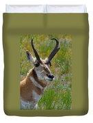 Pronghorn Buck Duvet Cover