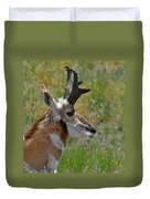 Pronghorn Buck Profile Duvet Cover by Karon Melillo DeVega