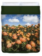 Protea Blossoms Duvet Cover