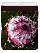 Protea Flower 1 Duvet Cover