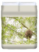 Puffed Up Little Owl In A Willow Tree Duvet Cover