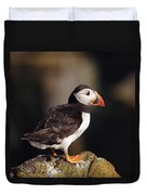 Puffin On Rock Duvet Cover