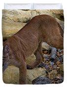 Puma Stalking Duvet Cover