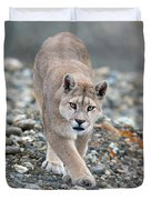 Puma Walk Duvet Cover