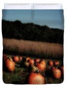 Pumpkin Field Shadows Duvet Cover
