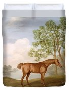 Pumpkin With A Stable-lad Duvet Cover by George Stubbs