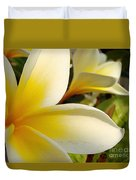 Pure Beauty Plumeria Flowers Duvet Cover