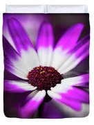 Purple And White Daisy  Duvet Cover