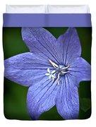 Purple Balloon Flower Duvet Cover