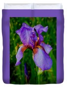 Purple Bearded Iris Portrait Duvet Cover