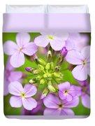 Purple Circle Of Dames Rocket Phlox In Spring Garden Duvet Cover