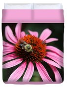 Purple Cone Flower 3 Duvet Cover