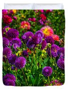 Purple Dahlias Duvet Cover