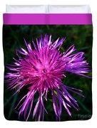Purple Dandelions 4 Duvet Cover