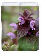Purple Deadnettle Bloom Duvet Cover
