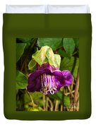 Purple Flower Of The Vine Known As Cathedral Bells Duvet Cover
