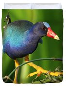 Purple Gallinule Duvet Cover