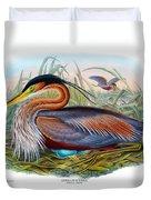 Purple Heron Antique Bird Print John Gould The Birds Of Great Britain Duvet Cover