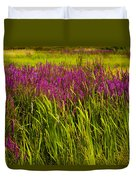 Purple Loosetrife And Cat-tails Duvet Cover