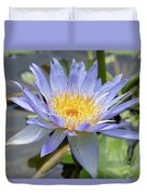 Purple Water Lily Flowers Blooming In Pond Duvet Cover