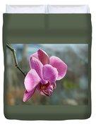 Purple Phalaenopsis Orchid Duvet Cover