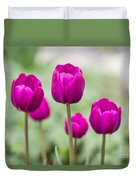 Purple Tulips 1 Duvet Cover