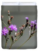 Purple Wildflower In Shiloh National Military Park, Tennessee Duvet Cover