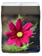 Purple Wood Aster  Duvet Cover