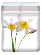Purple Yellow Tulips 1 Duvet Cover