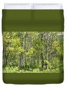 Quaking Aspens 2 Duvet Cover