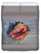 Queen Conch Peeking  Duvet Cover