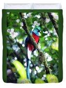 Quetzal In Monteverde Duvet Cover
